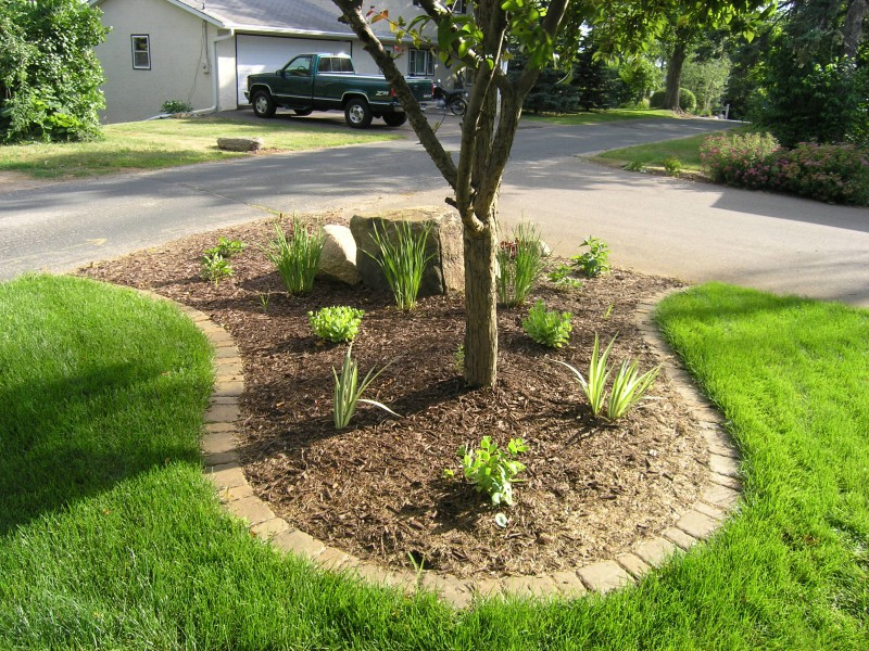Image of: Edging Stones For Landscaping Garden