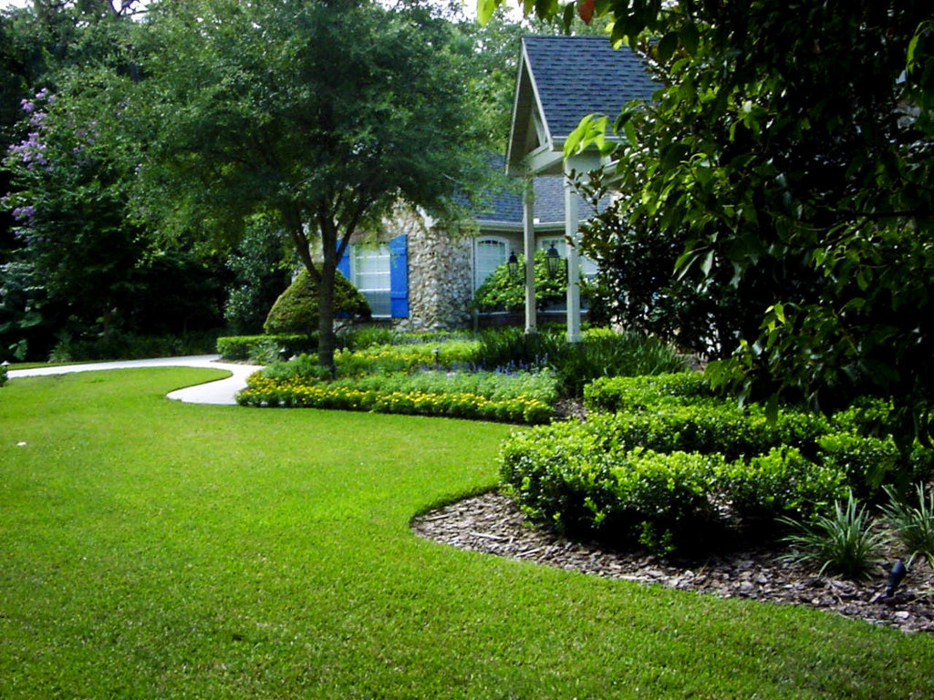 Image of: Smart Evergreen Landscaping