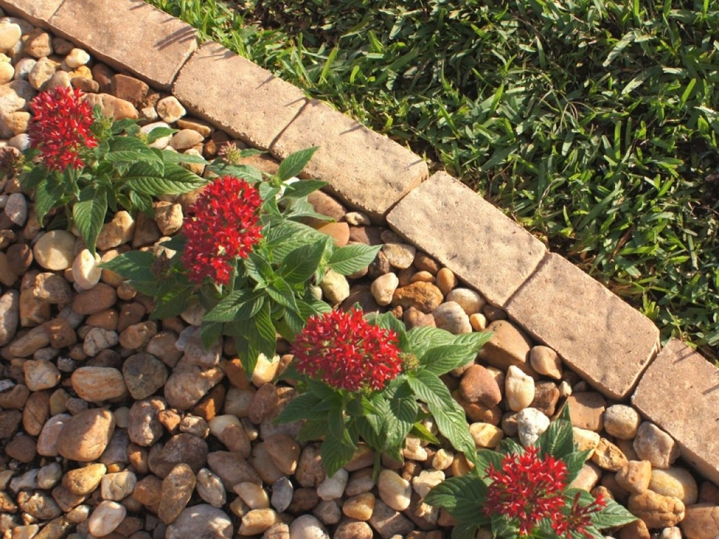 Image of: 10 Garden Edging Ideas With Bricks And Rocks Garden Lovers Club Inside Landscaping Edging Bricks How To Install Landscaping Edging Bricks