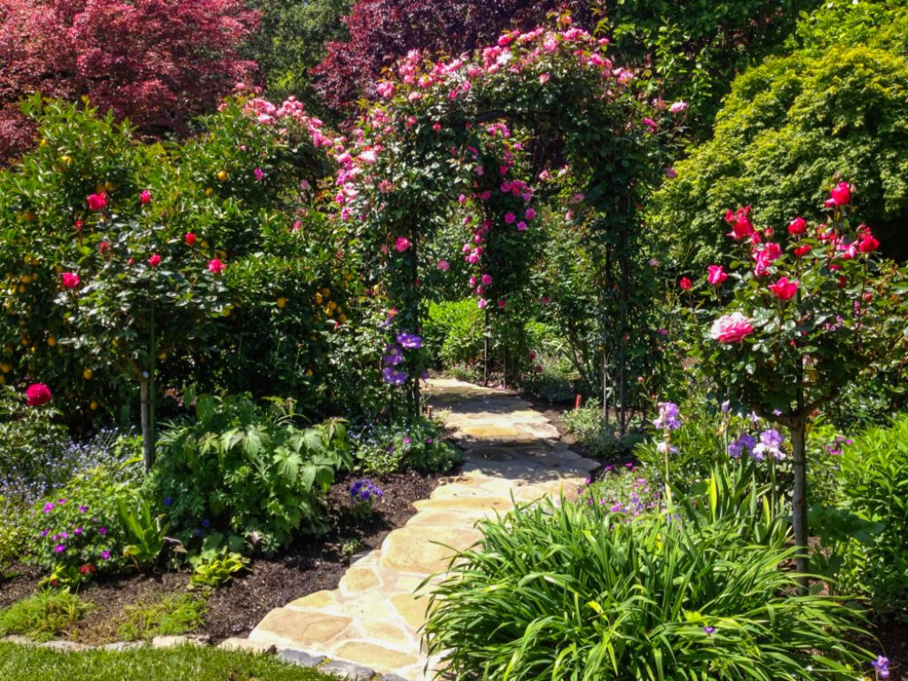 Image of: Arbor Landscaping Houston Reviews