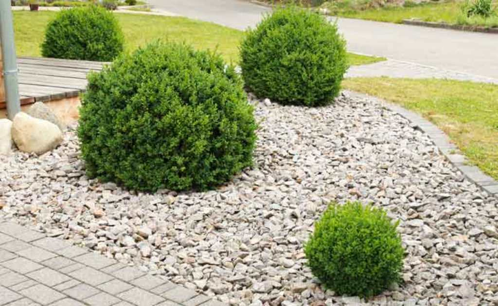 Image of: Landscaping With Pebbles And Pavers