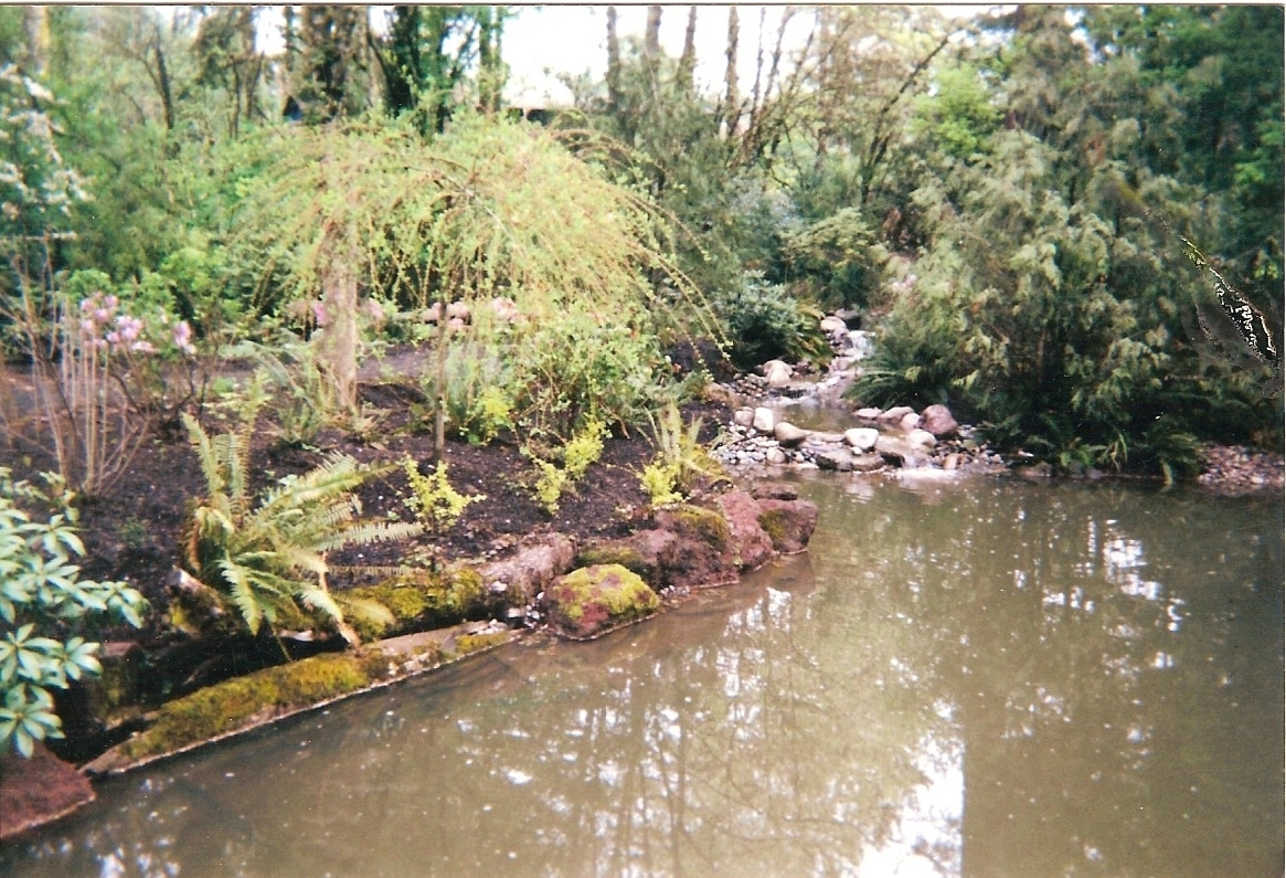 Image of: Designing Water In The Landscape Steve Snedekers Landscaping Throughout Creek Landscaping Ideas Create Creek Landscaping