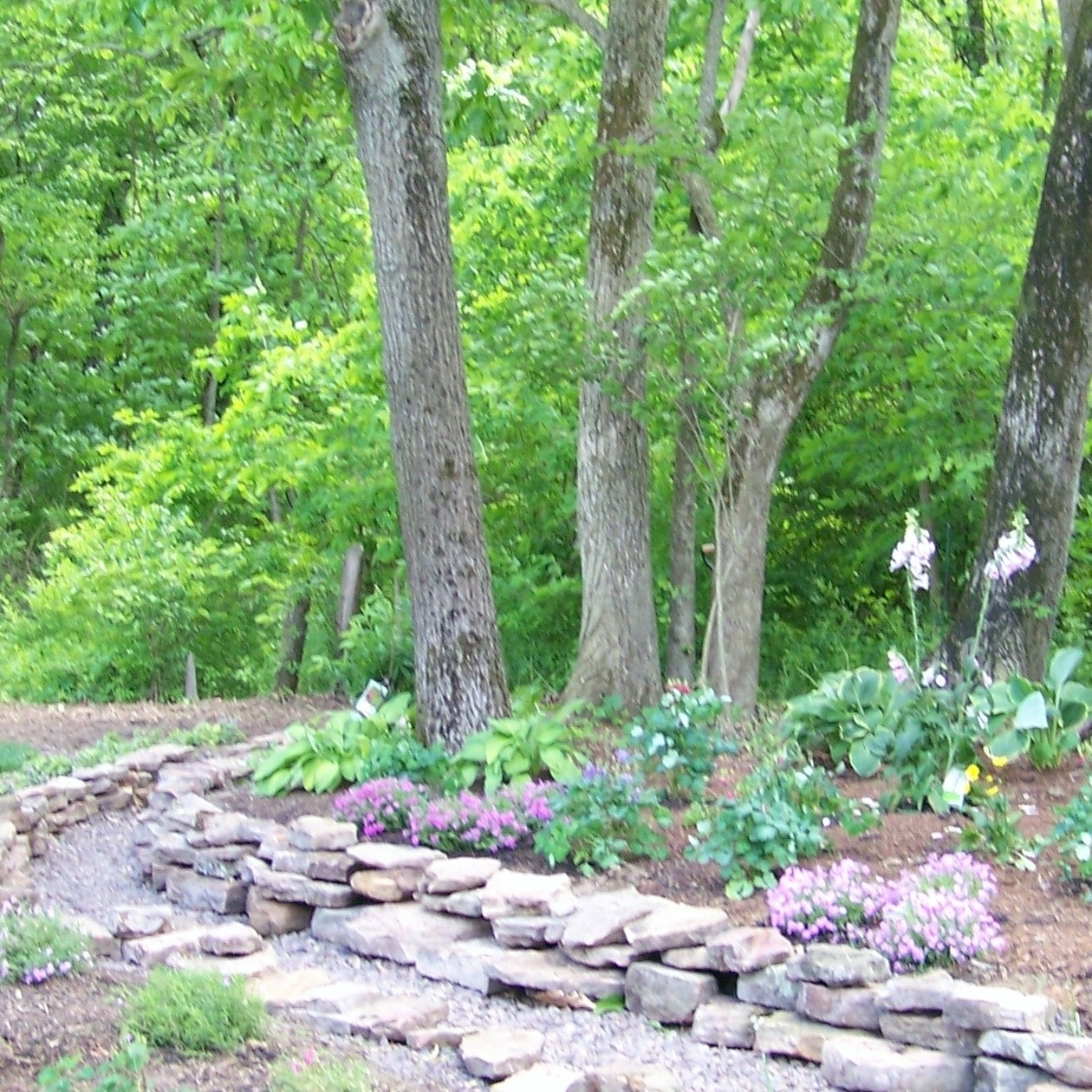 Image of: Dry Creek Bed Sod Costs Flower Landscaping Growing Grass Inside Creek Landscaping Ideas Create Creek Landscaping