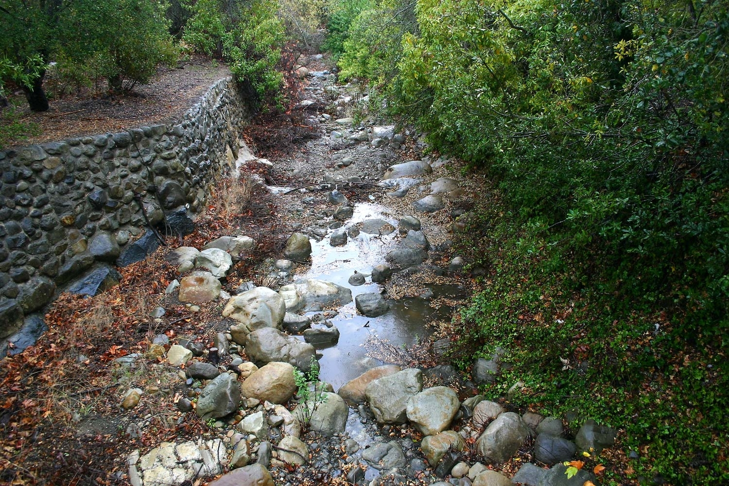 Image of: Rain At Last Has El Nino Finally Arrived With Regard To Creek Landscaping Ideas Create Creek Landscaping