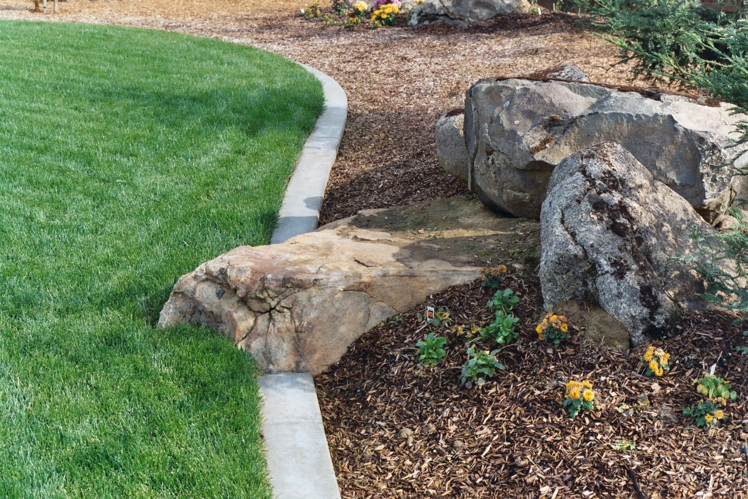 Image of: The Advantages Of Landscape Boulders Thediapercake Home Trend Throughout Landscaping Boulders Pretty Landscaping Boulders Types