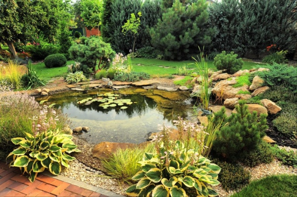 Image of: Backyard Pond Landscaping Ideas