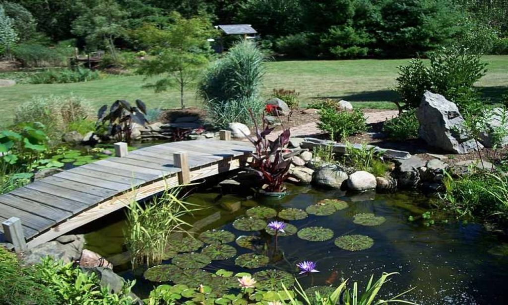 Image of: Big Pond Landscaping Ideas