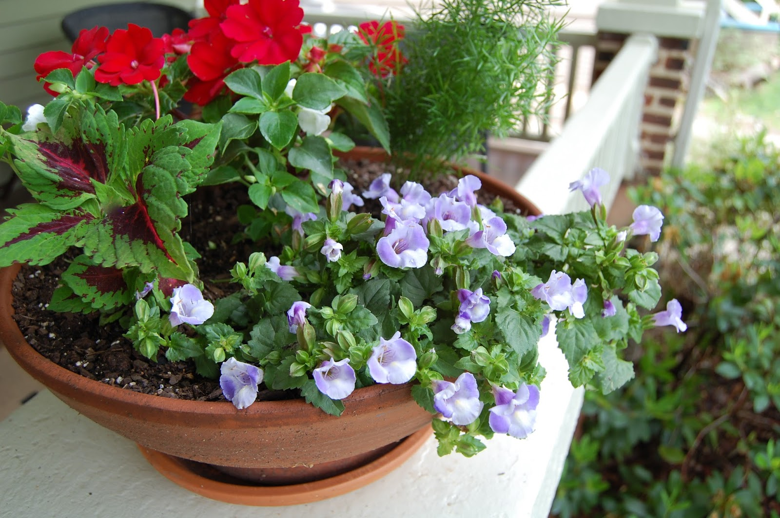 Image of: Front Porch Planters Beauty