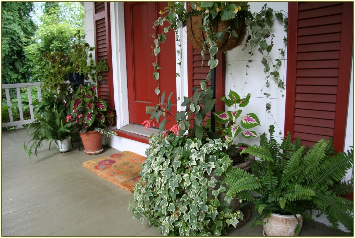 Image of: Front Porch Planters Best