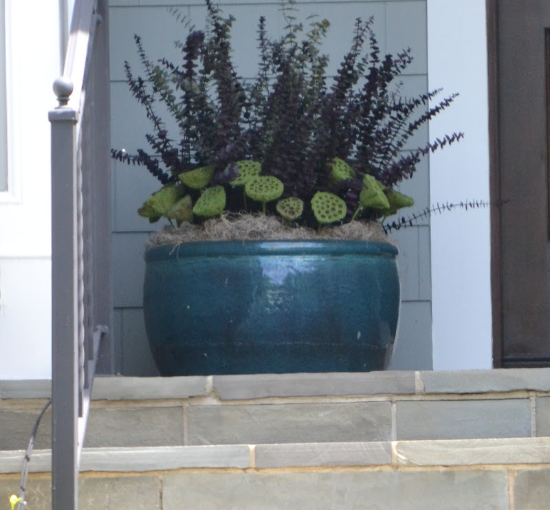 Image of: Front Porch Planters Ideas