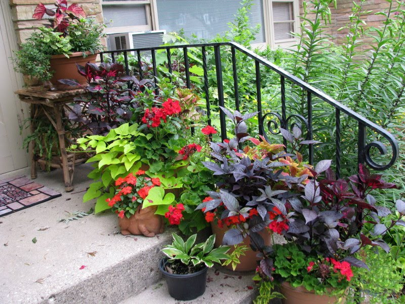 Image of: Front Porch Planters Popular