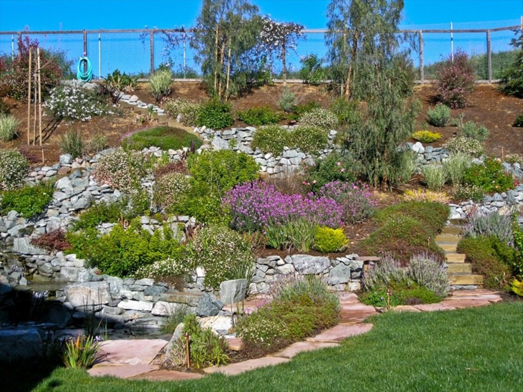 Image of: Inexpensive Landscaping Companies