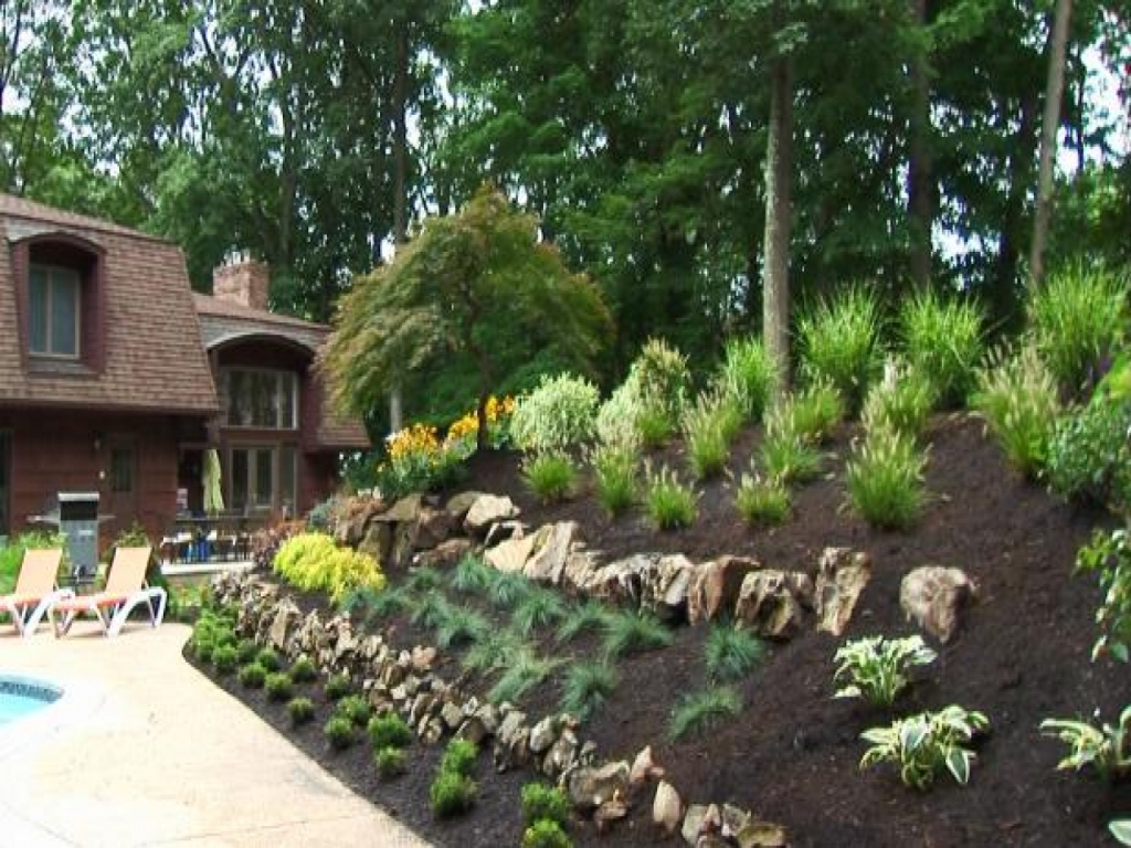 Image of: Inexpensive Landscaping Ideas