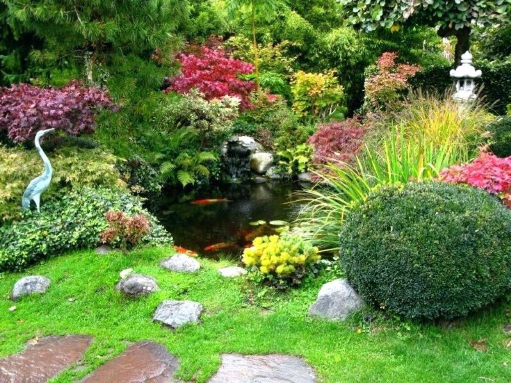 Image of: Large Pond Landscaping Ideas