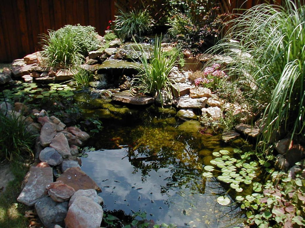 Image of: Pond Landscaping Ideas Pictures