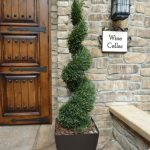 Print Front Porch Topiary