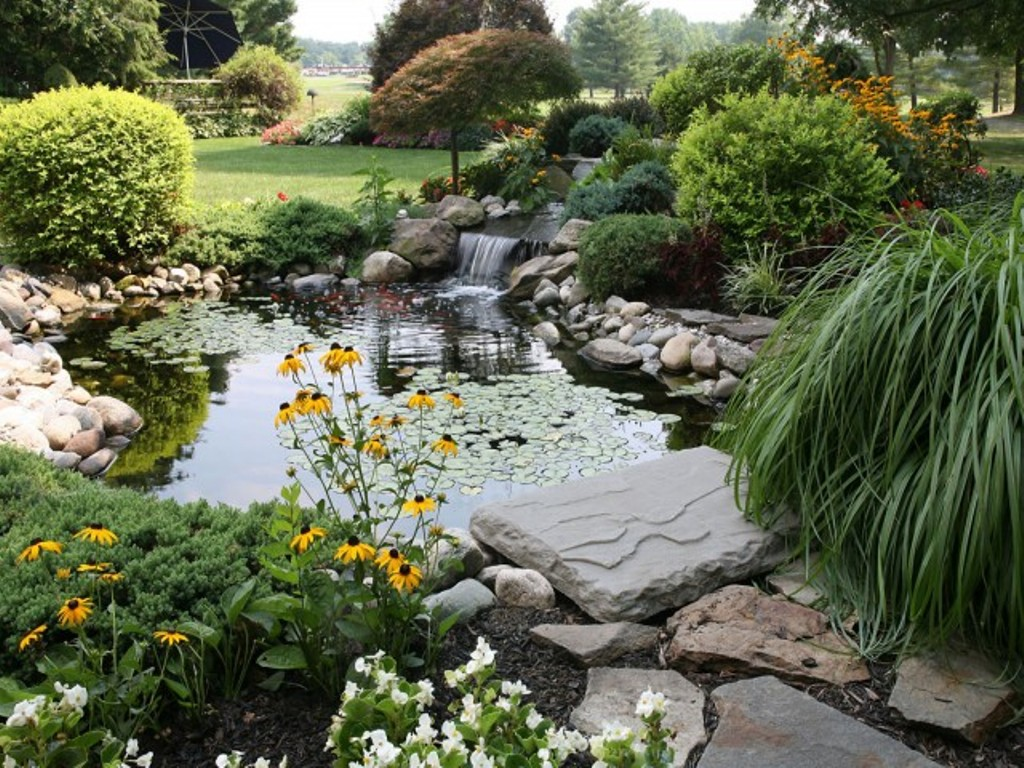 Image of: Waterfall Pond Landscaping Ideas
