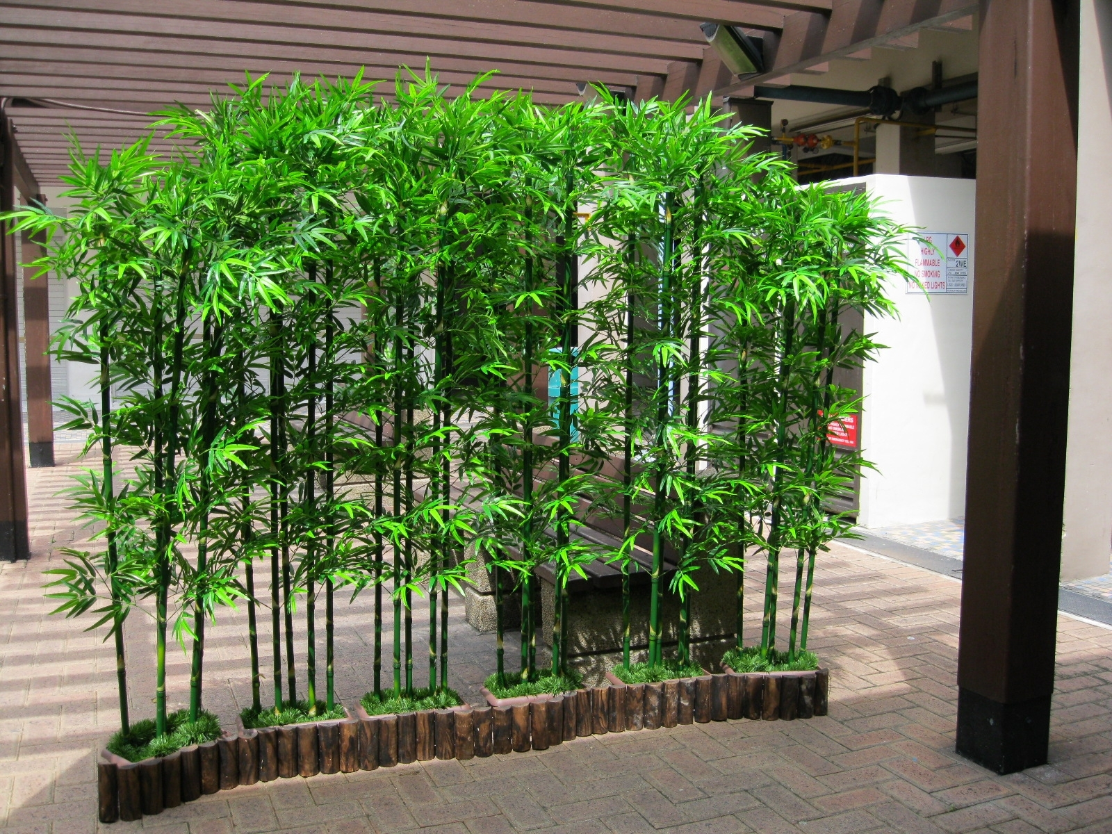 Image of: Beautiful Bamboo Landscaping Ideas Design Ideas Decors With Bamboo Landscaping Bamboo Landscaping As A Plant