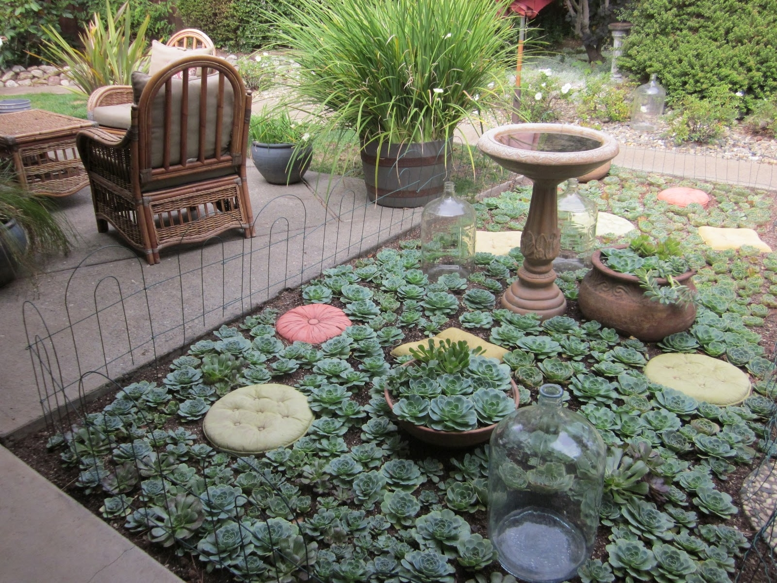Image of: Beautiful Landscaping With Succulents Design Ideas Decors With Landscaping With Succulents Landscaping With Succulents Plant Ideas