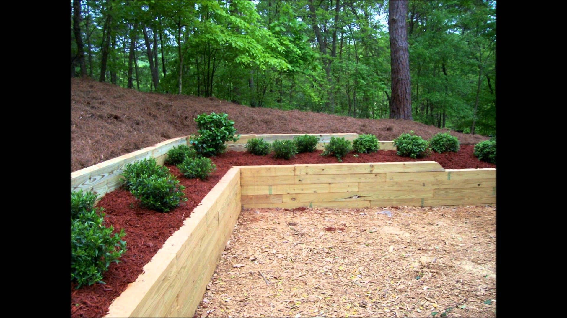 Image of: Bennett Landscape Inc Treated Timber Retaining Wall Planting With Regard To Landscape Timbers Retaining Wall Durable Landscape Timbers Retaining Wall For Great Decoration