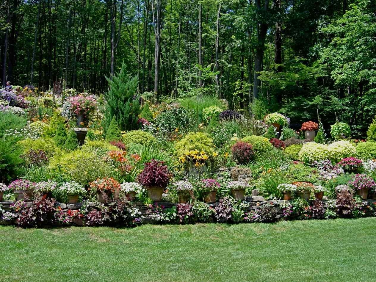 Image of: Shrubs And Flower Plants Landscaping How To Landscape A Slope With Landscaping Ideas For Hills Wonderful Landscaping Ideas For Hills