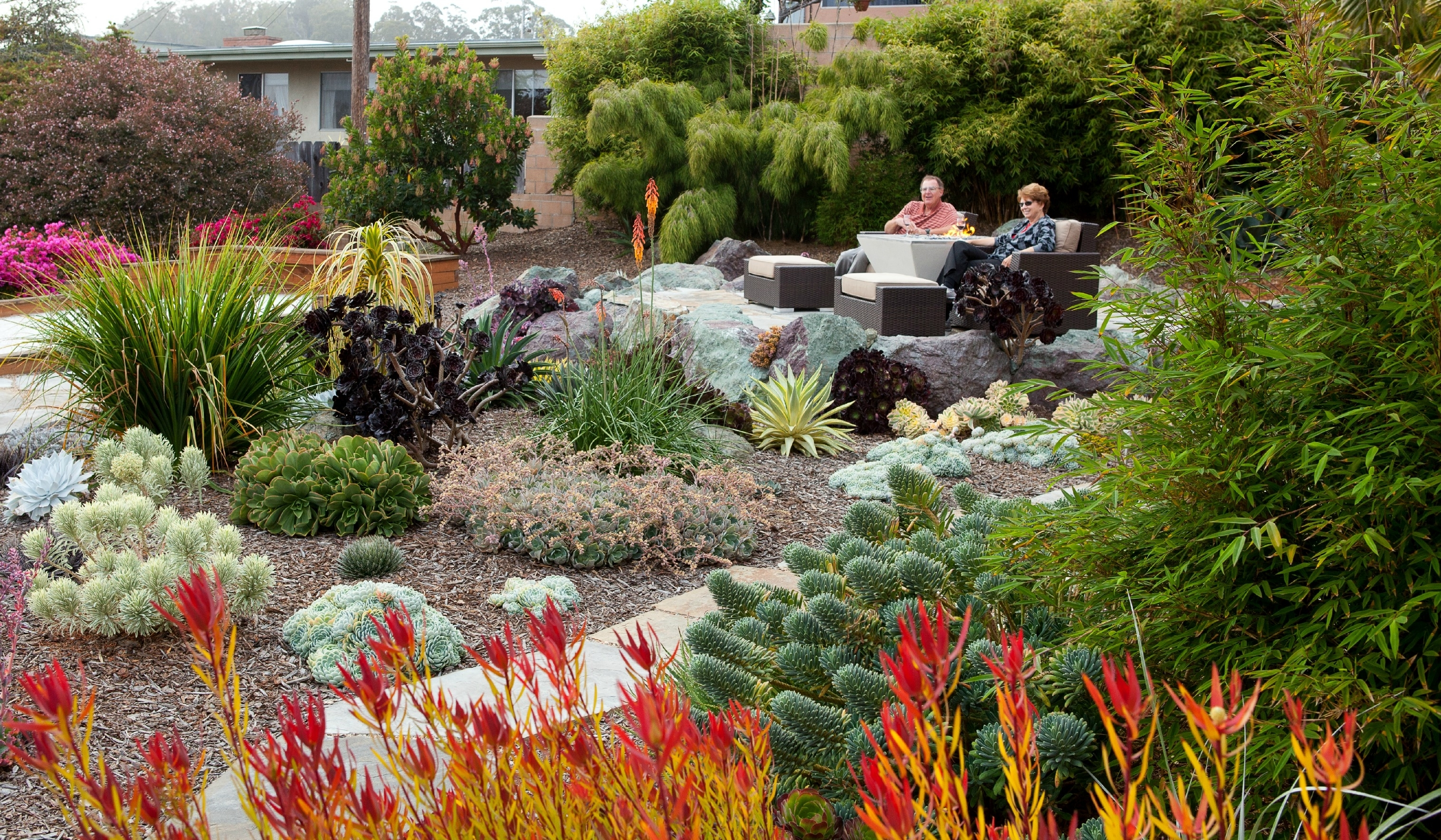 Image of: Succulent Design Gardens Gabriel Inc With Landscaping With Succulents Landscaping With Succulents Plant Ideas
