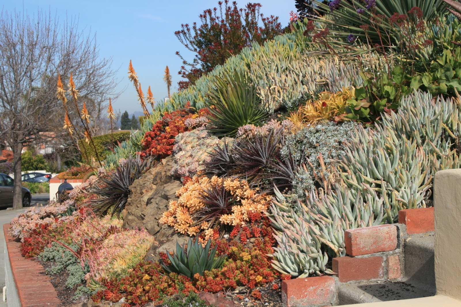 Succulent Landscape Design Top Garden Of The Year With Succulent With Regard To Landscaping With Succulents Landscaping With Succulents Plant Ideas