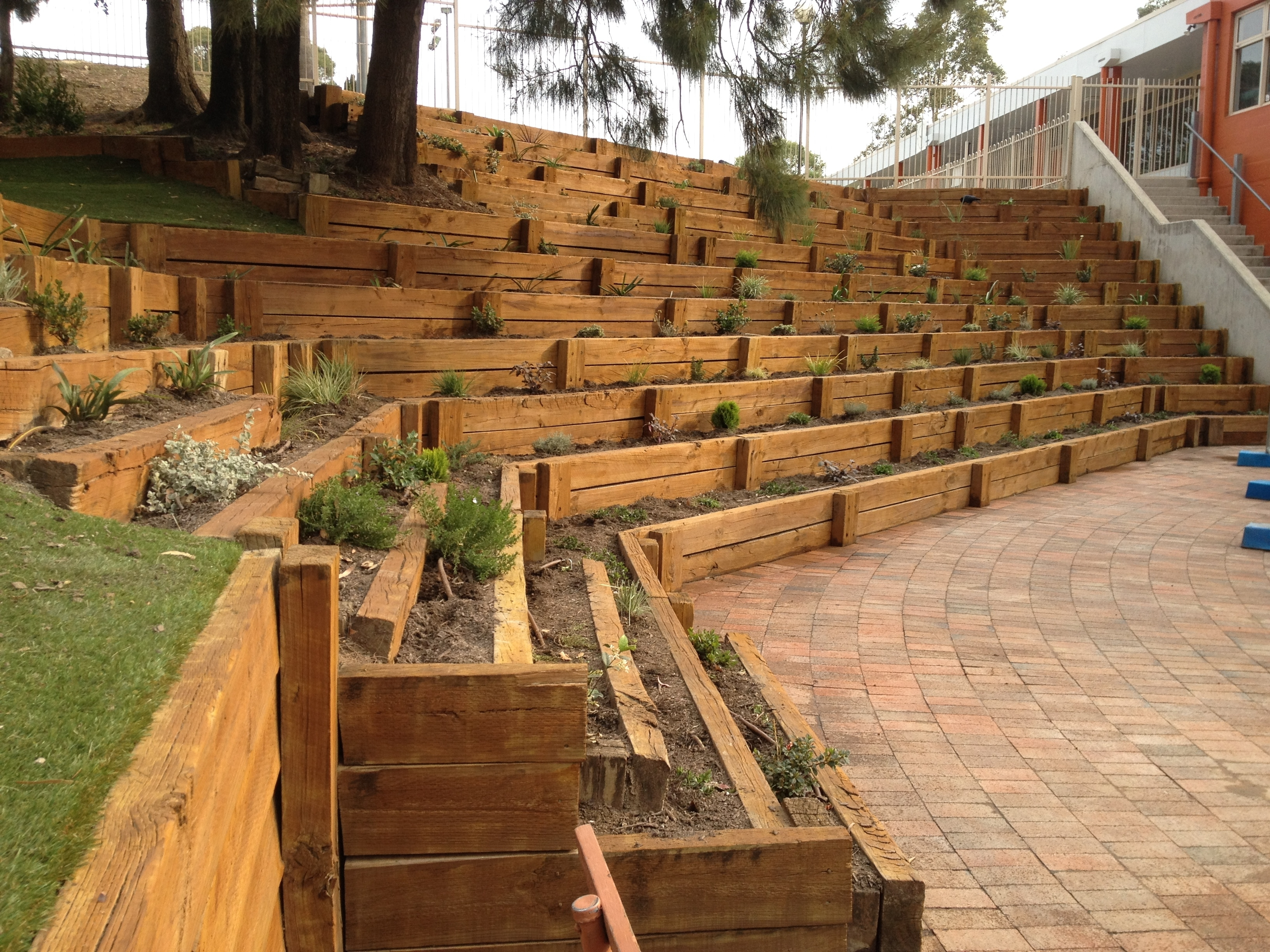 Image of: Timber Retaining Wall Marist High School Westmead Archoz Within Landscape Timbers Retaining Wall Durable Landscape Timbers Retaining Wall For Great Decoration
