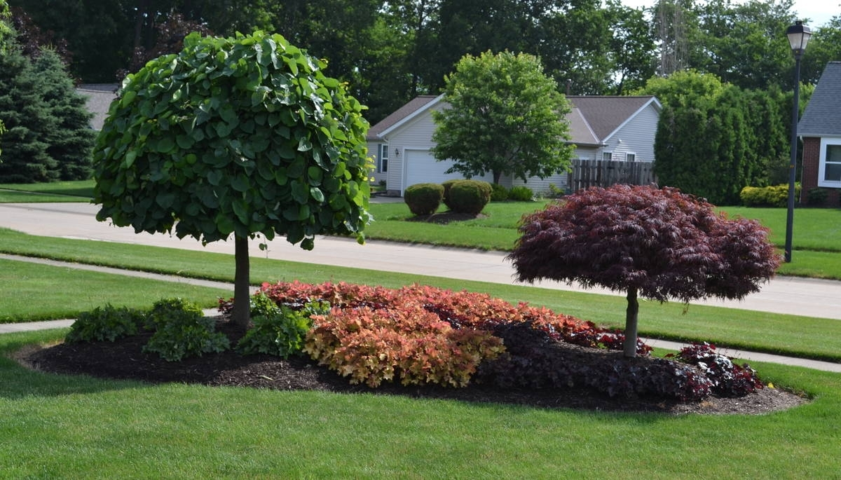 Image of: 23 Landscaping Ideas With Photos Intended For Landscaped Yards Decorative Ideas Landscaped Yards