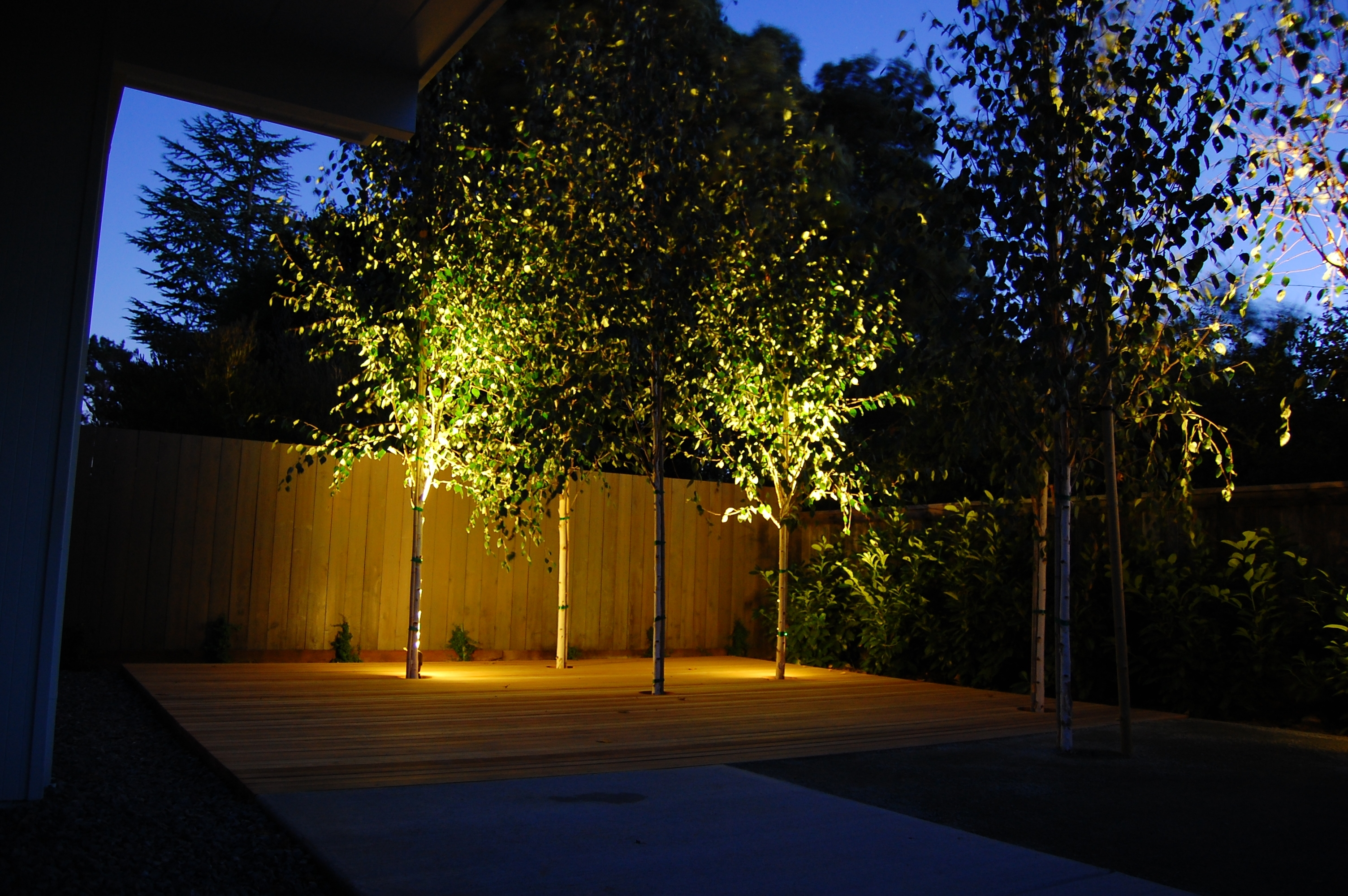 Image of: 24 Landscaping Lighting Hassle Free Landscape Lighting Within Landscape Spotlights Wonderful Landscape Spotlights At Night