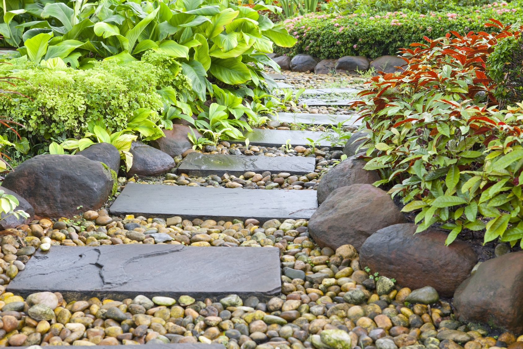 Image of: 3 Tips For Drought Resistant Landscaping Rap Construction Group Pertaining To Drought Friendly Landscaping Create Beautiful Drought Friendly Landscaping