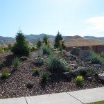 Amazing Front Yard Desert Landscaping Ideas Superhomeplan Throughout Special Desert Landscaping Ideas Special Desert Landscaping Ideas At Home