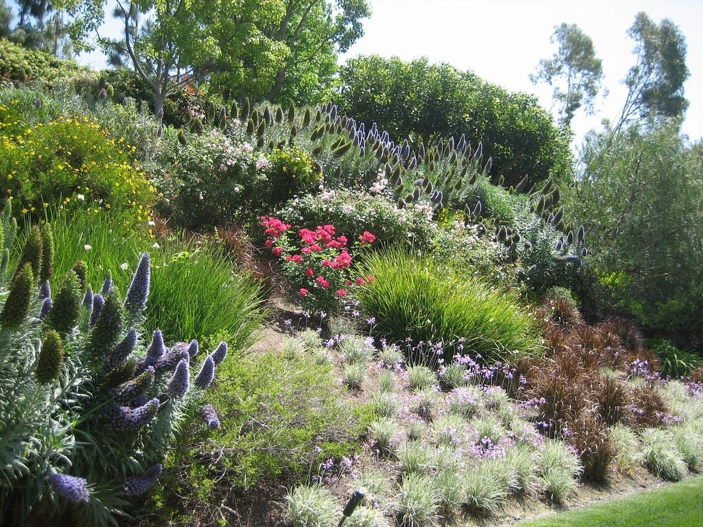 Image of: Backyard Hillside Landscape Ideas Designs Ideas And Decor Inside Hillside Landscape Ideas Creative Hillside Landscape Ideas