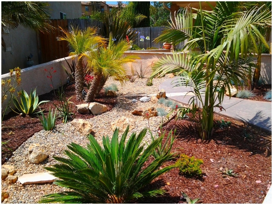Image of: Backyards Winsome Plants For Backyard Landscaping Backyard Sets With Regard To Desert Landscaping Plants Ideal Desert Landscaping Plants At Home