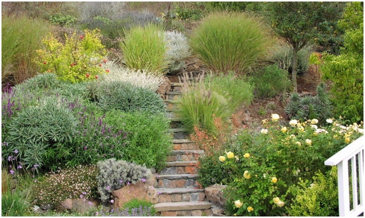 Image of: Backyards Wondrous Landscaping Ideas For Steep Slopes The Within Landscaping Ideas For Slopes Attractive Landscaping Ideas For Slopes