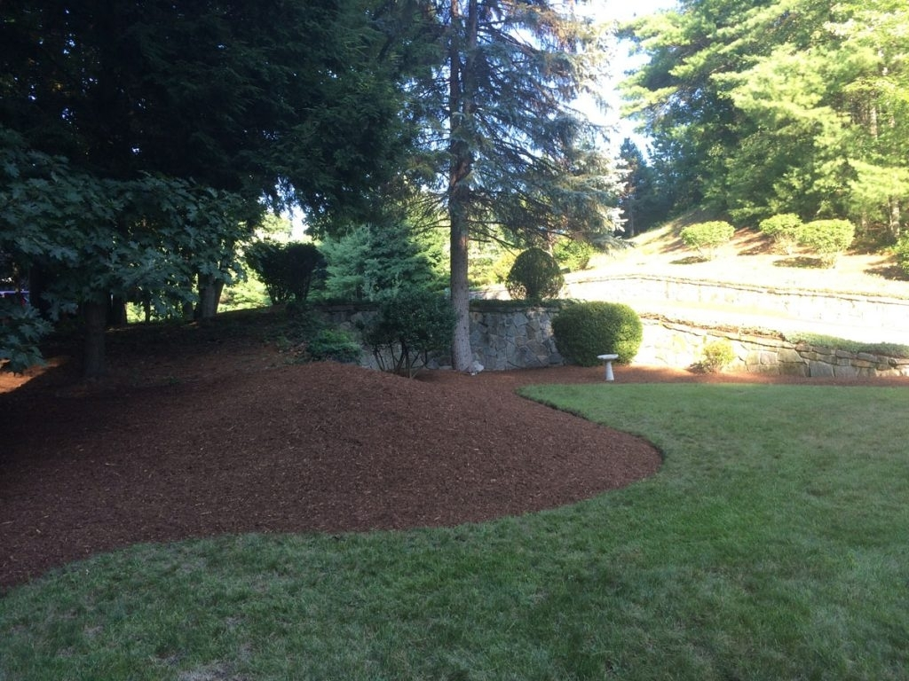 Image of: Bark Mulch For A Beautiful Yard In Nh Spring Landscaping Services With Regard To Landscaping Bark Landscaping Bark For Season