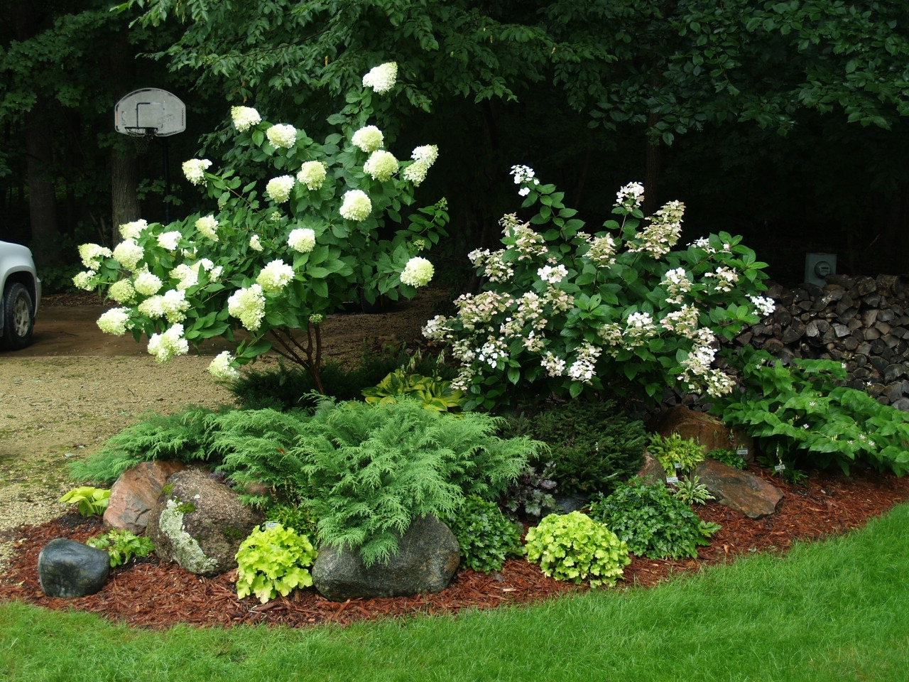 Image of: Best 25 Hydrangea Landscaping Ideas On Pinterest Hydrangea Bush Intended For Landscaping With Hydrangeas Landscaping With Hydrangeas Ideas