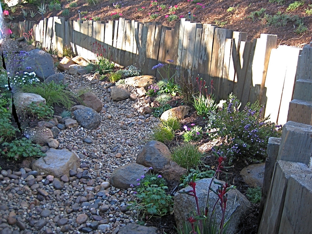 Image of: Best Landscape Ideas Drought Tolerant Landscaping Orange County With Regard To Drought Tolerant Landscape Ideas Popular Drought Tolerant Landscape Ideas