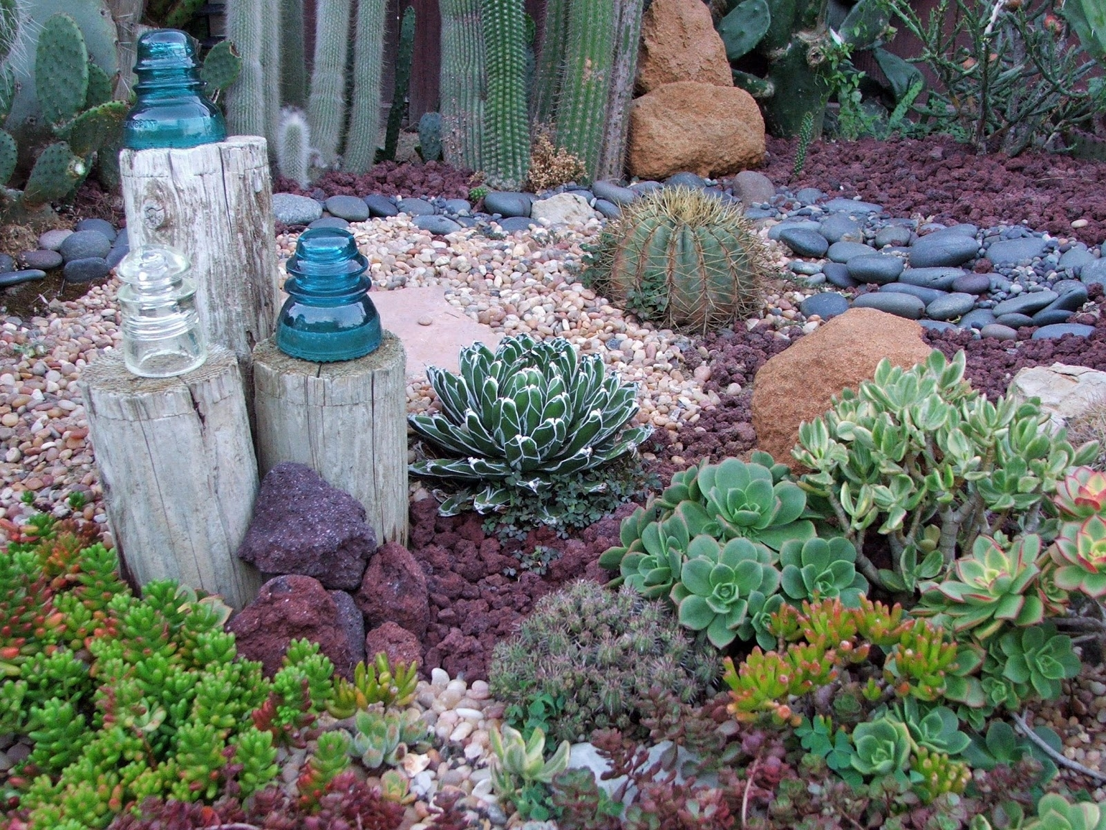 Image of: Rolitz Landscaping Ideas Throughout Cactus Landscaping