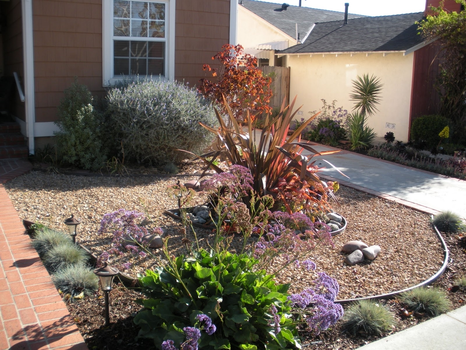 Image of: California Drought Resistant Landscaping Ideas Drought Tolerant Intended For Drought Resistant Landscaping Ideal Drought Resistant Landscaping Plants