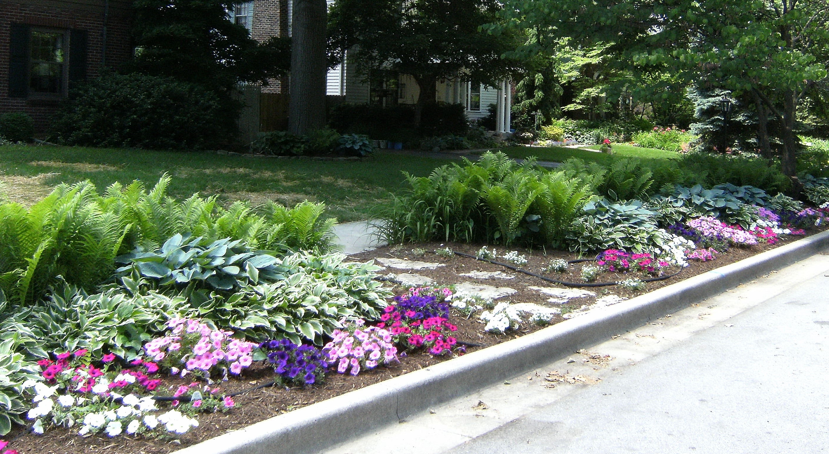 Image of: Cotterill Butler Tarkington Curbside Landscape Ideas