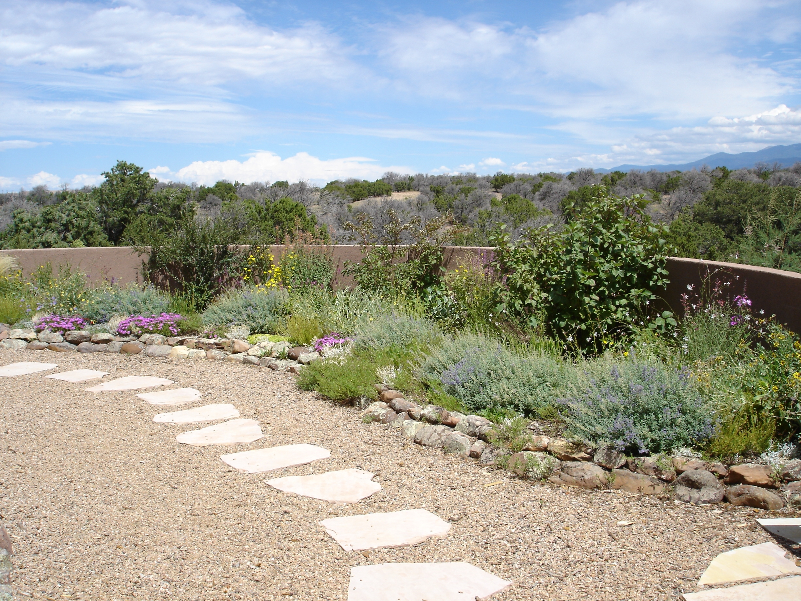 Image of: Couple On Patio Web Surprising Drought Tolerantping Ideas Photo Throughout Drought Tolerant Landscape Ideas Popular Drought Tolerant Landscape Ideas