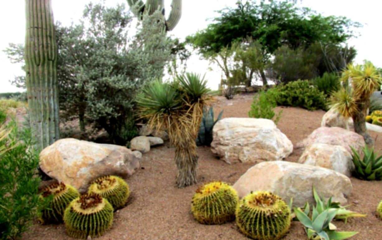Image of: Decorative Rock Landscapes In Cedar City Desert Landscaping Intended For Decorative Rocks For Landscaping Decorative Rocks For Landscaping Ideas