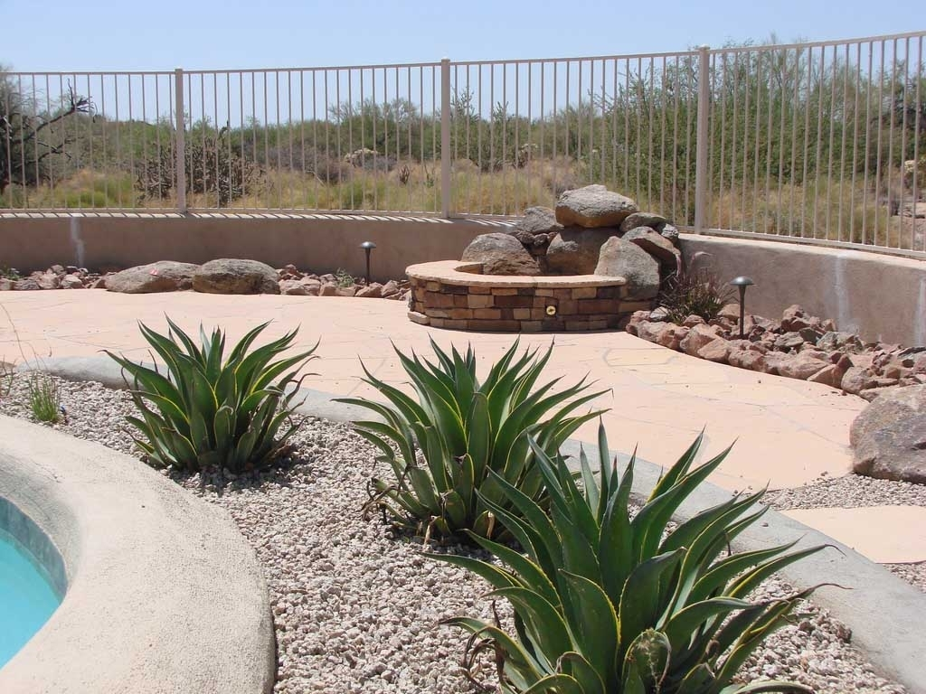 Image of: Desert Backyard Landscape Theme Swimming Pool Side Photo With Regard To Desert Landscaping Plants Ideal Desert Landscaping Plants At Home