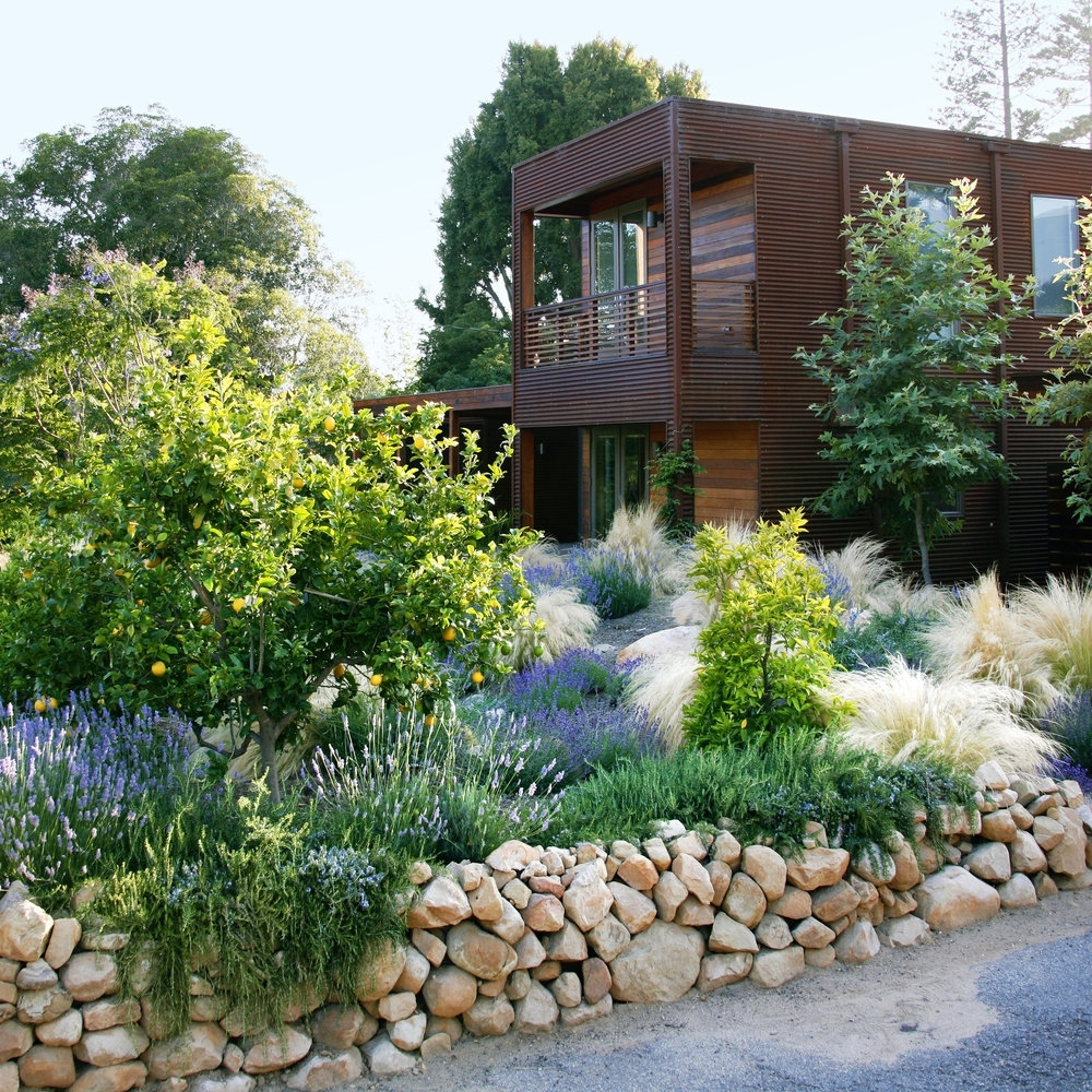 Image of: Designing With Nice Drought Tolerant Landscape Design