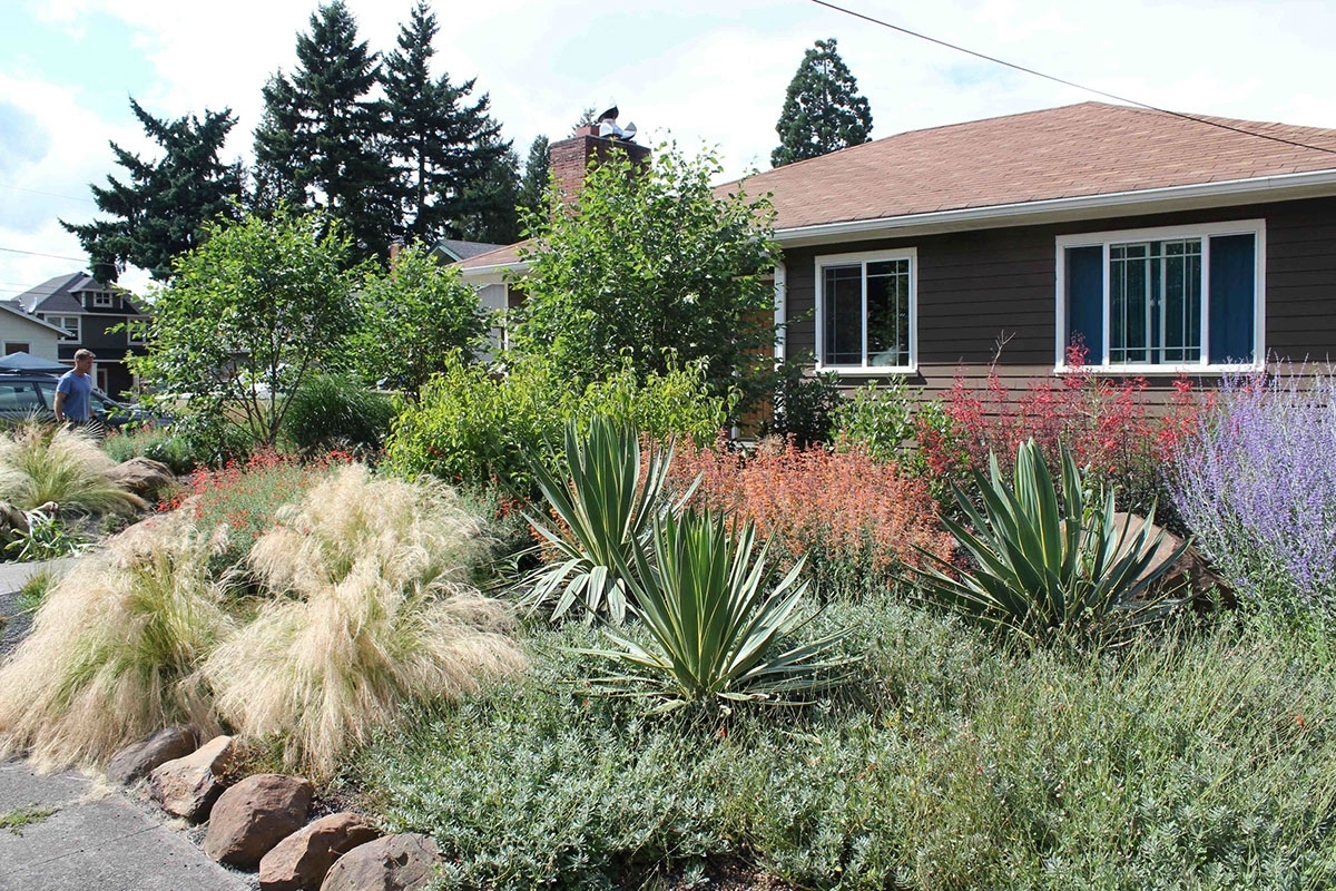 Image of: Drought Resistant Garden Plant A Drought Tolerant Garden For An With Drought Tolerant Landscape Ideas Popular Drought Tolerant Landscape Ideas