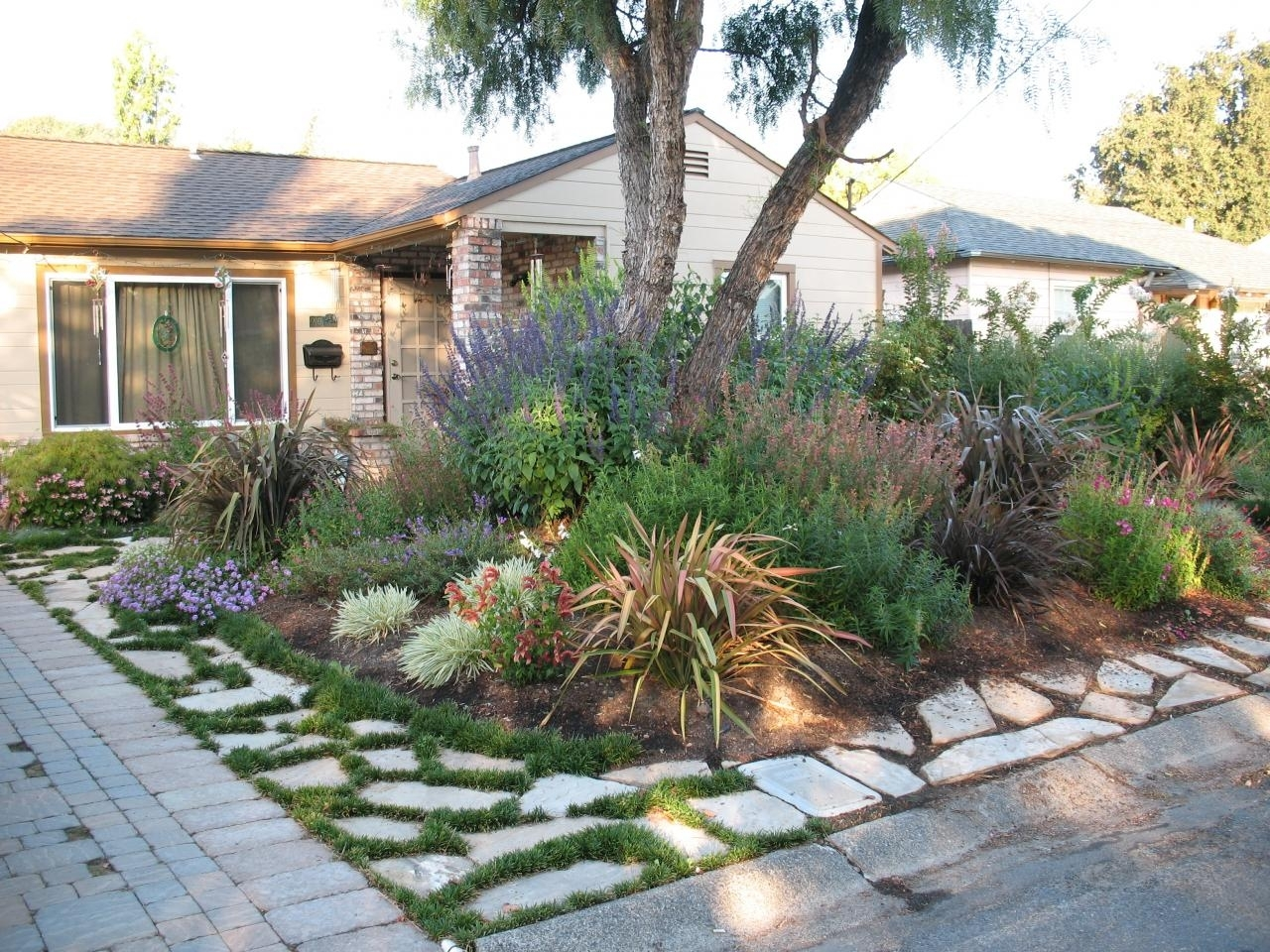 Image of: Drought Resistant Landscape Interesting Drought Tolerant With Regard To Drought Resistant Landscaping Ideal Drought Resistant Landscaping Plants