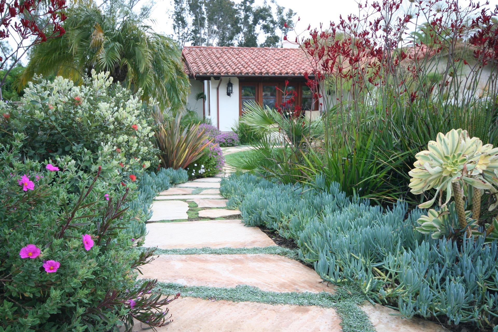 Image of: Intended Landscaping For Affordable Drought Landscaping