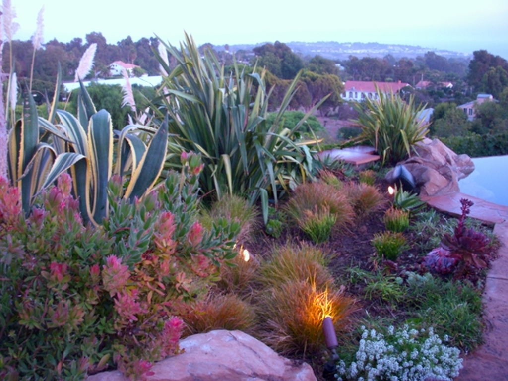 Image of: Garden Design Inside Nice Drought Tolerant Landscape Design