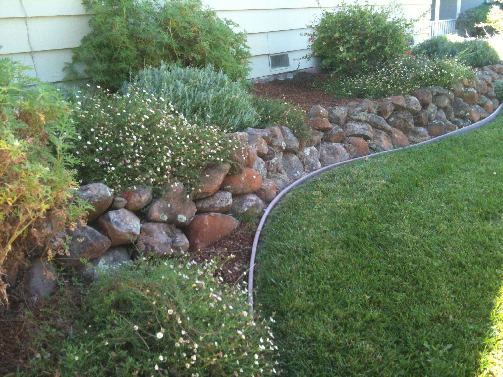 Image of: Landscape Design Tool Throughout Affordable Drought Landscaping